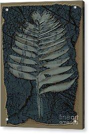 Fossil Palm Acrylic Print by Delynn Addams