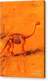 Fossilised Exhibit In Toy Dinosaurs Acrylic Print