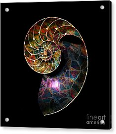 Acrylic Print featuring the digital art Fossilized Nautilus Shell by Klara Acel