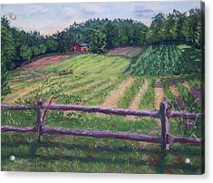 Fosterfields Farm Acrylic Print by Laurie Paci