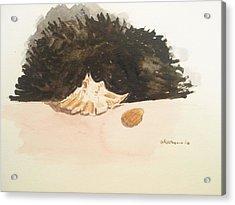 Found Acrylic Print by Robby  Entrekin