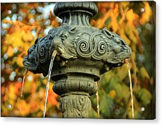Acrylic Print featuring the photograph Fountain At Union Park by Chris Berry
