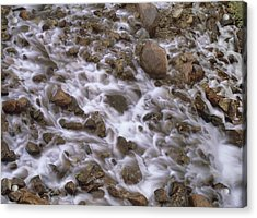 Fountain Creek Up Close  Acrylic Print by Bijan Pirnia