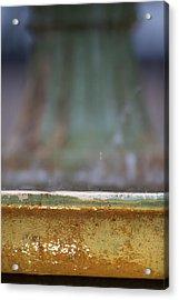 Fountain Acrylic Print by Dustin K Ryan