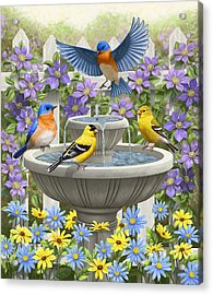 Fountain Festivities - Birds And Birdbath Painting Acrylic Print by Crista Forest