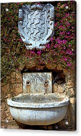 Acrylic Print featuring the photograph Fountains And Flowers At The Roman Walls In Tarragona by Eduardo Jose Accorinti