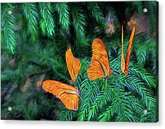 Four Brothers Acrylic Print by James Steele