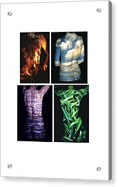 Four Elements Acrylic Print by Arla Patch