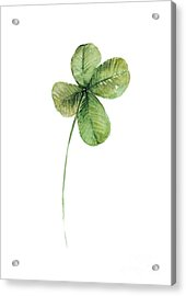 Four Leaf Clover Watercolor Poster Acrylic Print by Joanna Szmerdt
