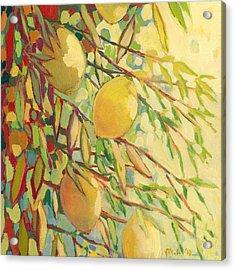 Four Lemons Acrylic Print by Jennifer Lommers