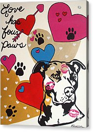 Four Pitty Paws Acrylic Print by Melissa Goodrich