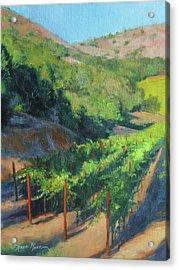 Four Rows Napa Valley Acrylic Print by Anna Rose Bain