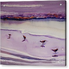 Four Sandpipers Acrylic Print