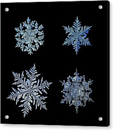 Acrylic Print featuring the photograph Four Snowflakes On Black Background by Alexey Kljatov