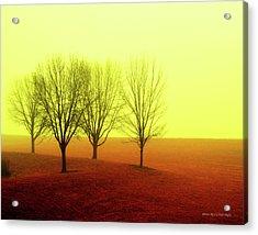 Four Trees Acrylic Print
