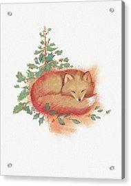 Fox And Holly Acrylic Print by Tracy Herrmann