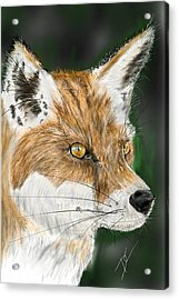 Acrylic Print featuring the digital art Fox by Darren Cannell