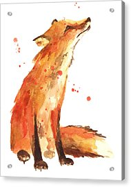 Fox Painting - Print From Original Acrylic Print by Alison Fennell
