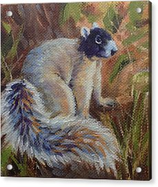 Acrylic Print featuring the painting Fox Squirrel by Pam Talley