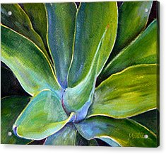 Fox Tail Agave 2 Acrylic Print by Athena Mantle