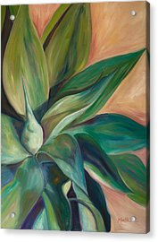 Foxtail Agave 4 Acrylic Print by Athena Mantle