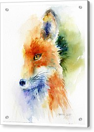 Foxy Impression Acrylic Print by Christy Lemp