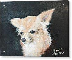 Foxy Lady  Acrylic Print by Bonnie Heather