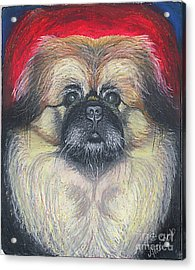 Acrylic Print featuring the pastel Fozy Bear Pekingese by Ania M Milo