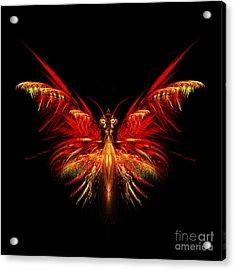 Fractal Butterfly Acrylic Print