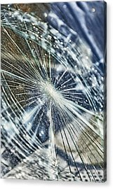 Fractured Glass #11 Acrylic Print
