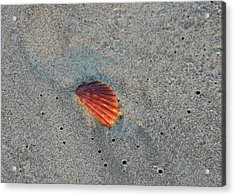 Fiery Fracture Acrylic Print by JAMART Photography