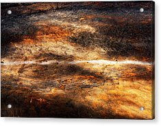 Fractured Acrylic Print by Ryan Manuel