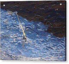 Fragile Ice Acrylic Print by Marilynne Bull