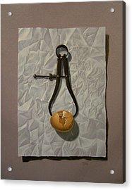 Fragility Acrylic Print by Timothy Jones