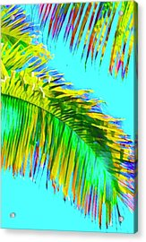 Fragment Of Coconut Palm Psychedelic Acrylic Print