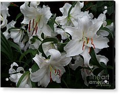Fragrant Beauties Acrylic Print