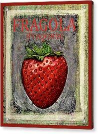 Fragraria Acrylic Print