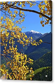 Framed By Fall Acrylic Print by Scott Mahon