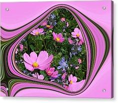 Framed Cosmos Acrylic Print