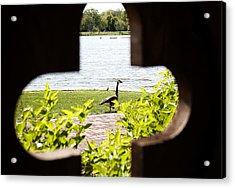 Framed Nature Acrylic Print