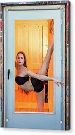 Framed- Stretch Acrylic Print
