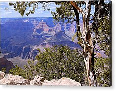 Framed View - Grand Canyon Acrylic Print by Larry Ricker