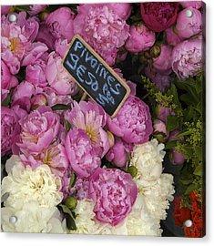 France, Paris Peonies Flowers Acrylic Print by Keenpress
