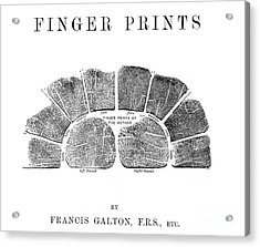 Francis Galtons Fingerprints, 1892 Acrylic Print by Wellcome Images