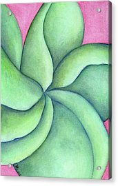 Frangipani Green Acrylic Print