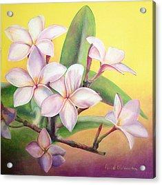 Frangipanier Acrylic Print by Muriel Dolemieux