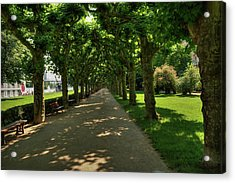 Acrylic Print featuring the photograph Frankfurt - Sycamore Alley 001 by Lance Vaughn