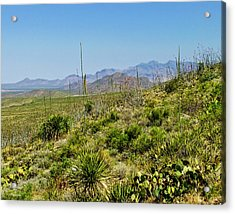 Franklin Mountains State Park Facing North Acrylic Print