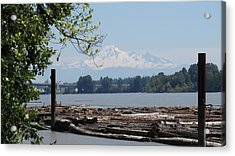 Fraser River And Mount Baker Acrylic Print