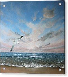 Free As A Bird Acrylic Print by Paul Newcastle